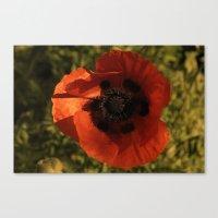 woodstock Canvas Prints featuring woodstock flowers by Teresa Gabry