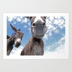 Funny Donkey Art Print