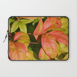 Summery Pink and Green Leaves Laptop Sleeve
