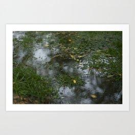 Water.  Art Print