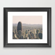 Arizona Cacti Framed Art Print