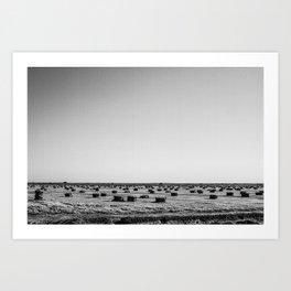 Salton Sea - Hay Stacks Art Print