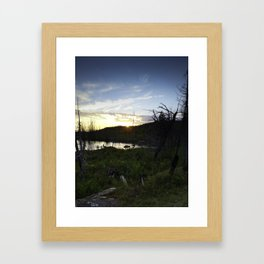Blueberry Sunset Framed Art Print