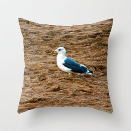 Seagull at the beach going for a walk Throw Pillow