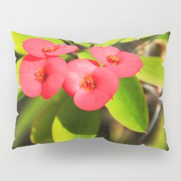 cactus flower Pillow Sham