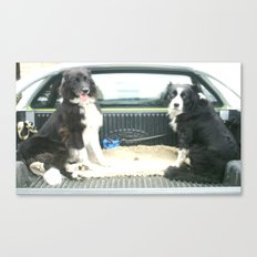 Two Dogs & a Ute Canvas Print