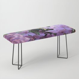 Busy Bee in Lilac Art Photography Bench