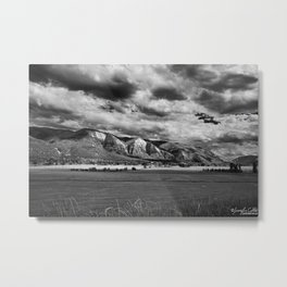 Durango Colorado Farming Metal Print
