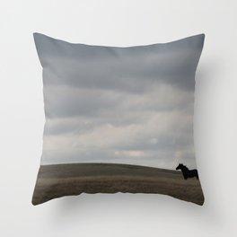 Horse running open prairie Throw Pillow
