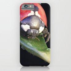 Ladybug Journey Slim Case iPhone 6s
