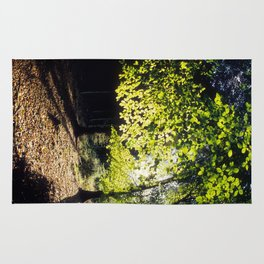 The Woods in Spring Rug