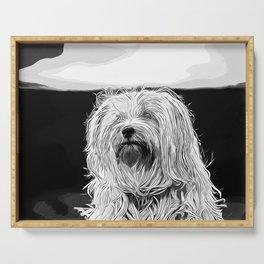 hairy havanese dog vector art black white Serving Tray