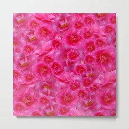 Winter Camellias in Pink Metal Print