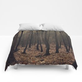 Winter magic forest Comforters