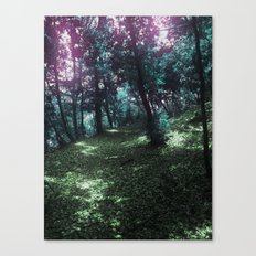 hometown forest Canvas Print