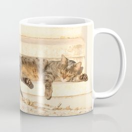 The sun shines on all cats equally Coffee Mug