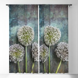 Three Allium Flowers Blackout Curtain