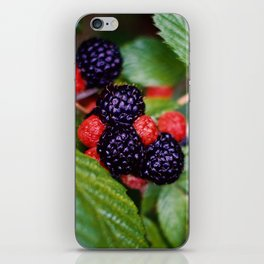 BLACK RASPBERRY iPhone Skin