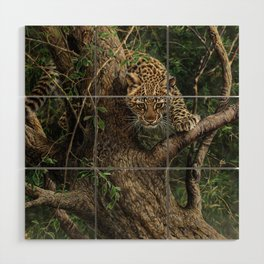Amur Leopard Cub in Tree Wood Wall Art