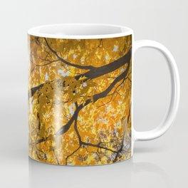 Sun Burst through Autumn Orange Leaves Coffee Mug