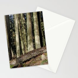 THE SUNNY EDGE OF A MOUNTAIN FOREST Stationery Cards