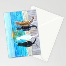 Cat Beach Sunset Stationery Cards