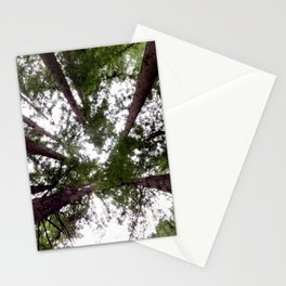 Look up! Redwood trees Stationery Cards