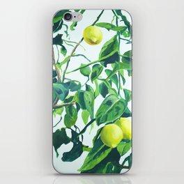 Foliage I / Lemon Tree iPhone Skin