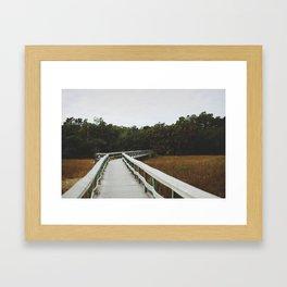 Bridge Over Everglades National Park in Florida Framed Art Print