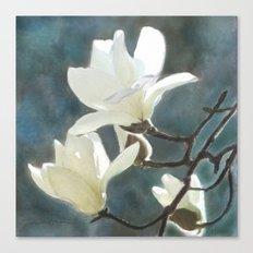 White Magnolia's One Canvas Print