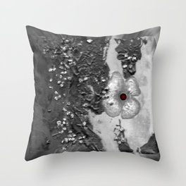 Poppy in the dark S50 Throw Pillow