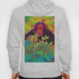 AnimalColor_Chimpanzee_003_by_JAMColors Hoody