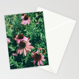 Busy Bee Stationery Cards