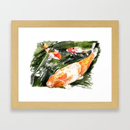 Koi carp 4 Framed Art Print