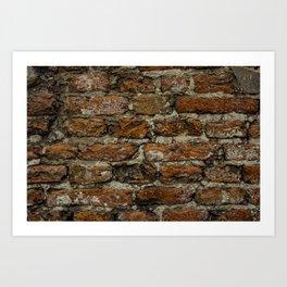 Bricks in the wall Art Print