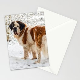 St Bernard dog in the snow Stationery Cards