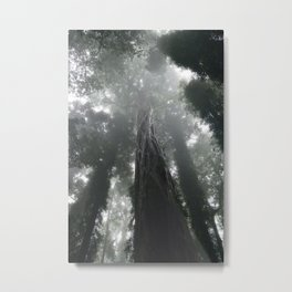 Mystique Metal Print