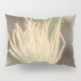 Apache Plume Pillow Sham
