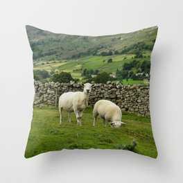 In the Moors Throw Pillow