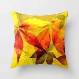 Virginia Creeper autumn colors Throw Pillow