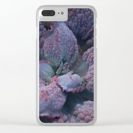 Echeveria 'Barbillion' Clear iPhone Case