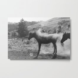 Horse Shaking Dust Cloud Metal Print
