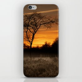 A Herd Of Red Deer At Sunset iPhone Skin