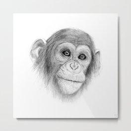 A Chimpanzee :: Not Monkeying Around Metal Print
