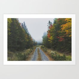 Looking for Moose Art Print