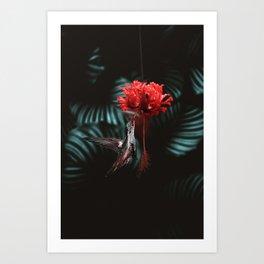 Hummingbird Poster Art Print