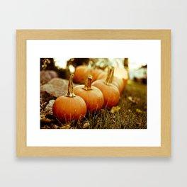 seven little pumpkins Framed Art Print