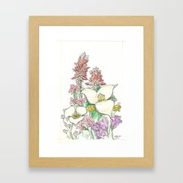 Montana Wildflowers Framed Art Print