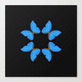 Blue Morpho Butterfly Symmetry Canvas Print