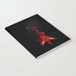 The Red Death Notebook